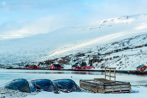 9.Eskifjordur 1