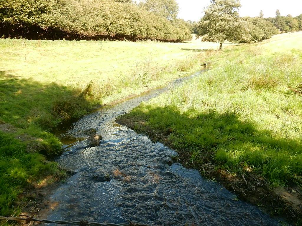 Stream Holmwood to Gomshall