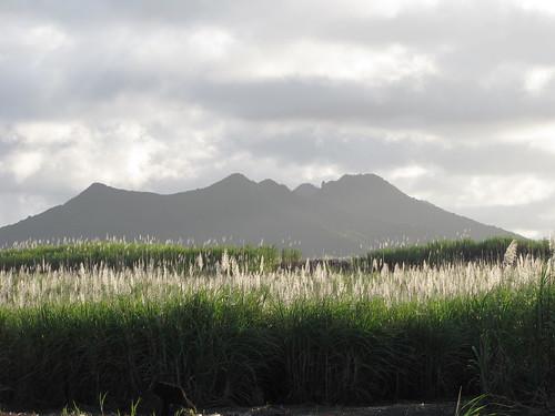 Mauritius | by linpicosarl