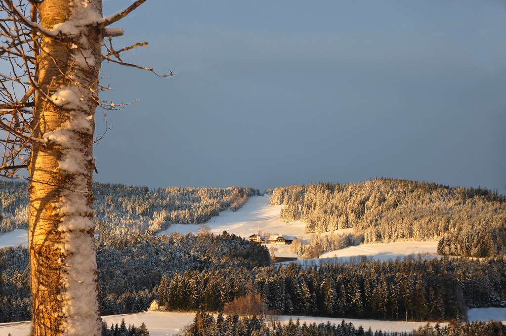 Schneeland Wenigzell