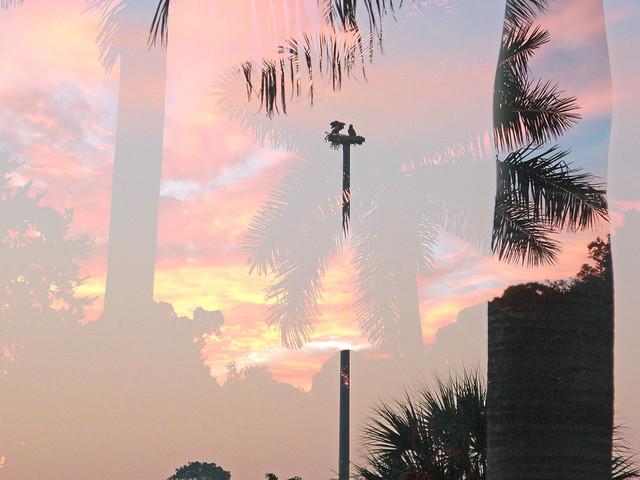 Sunrise:Sunset