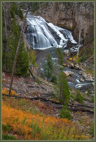 unitedstates yellowstonenationalpark wyoming gibbonfall
