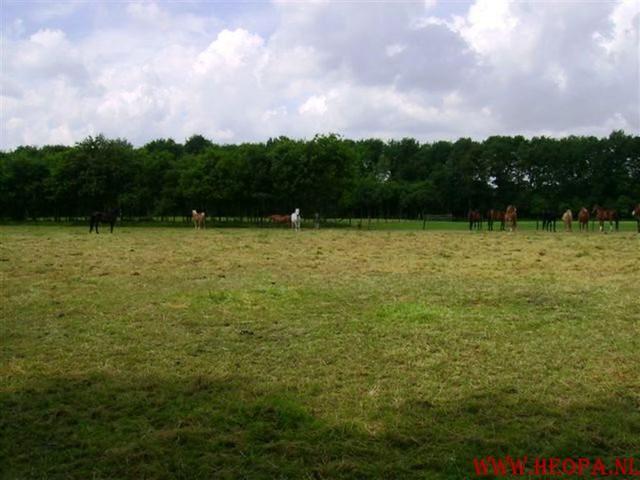 1e dag Amersfoort  40 km  22-06-2007 (40)