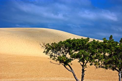 sky sand northcarolina nagshead outerbanks obx