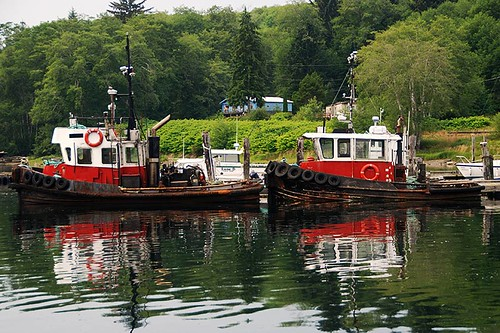 Tugs in Coal Harbour, Holberg Inlet, Vancouver Island, British Columbia