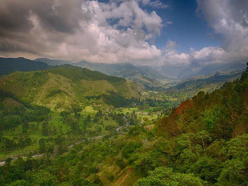 travel trees sky mountains green beautiful landscape colorful colombia armenia pereira travelphotography