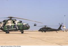 Mi-17 (Peru), H-1-H (Uruguai) e H-60L (Brasil) EJERCICIO COOPERACIÓN III - SICOFAA (Peru).