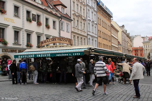 008614 - Praga
