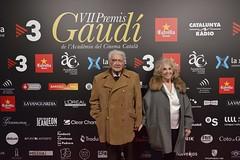 Catifa vermella VII Premis Gaudí (74)