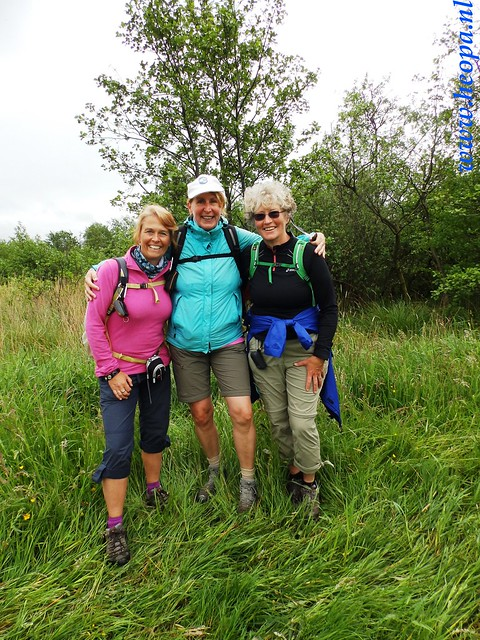 2016-05-25        s'Graveland       25 Km (95)