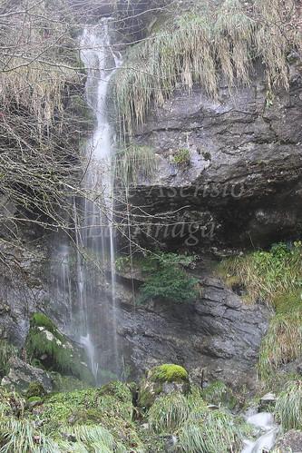 Parque Natural de Gorbeia #DePaseoConLarri #Photography 2596