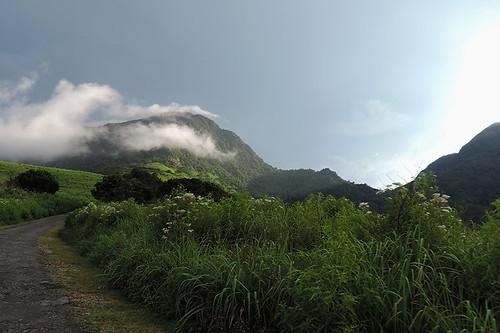 travel tropics nature cloudforest jungle landscapes ceylon knucklesmountainrange srilanka southasia asia ngc dnysmphotography dnysmsmugmugcom
