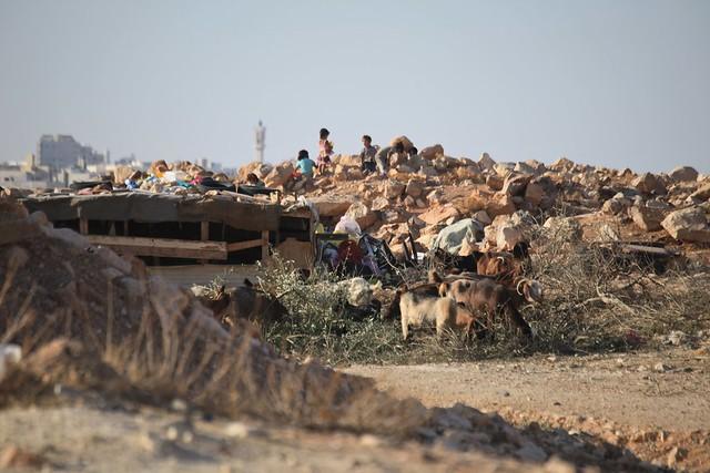 Kids in the Dump Bedouin Families Living on the Fringe Amman Jordan Middle East