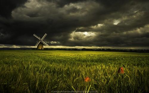 sky windmill field clouds landscape stormy poppy poppies landscapephotography