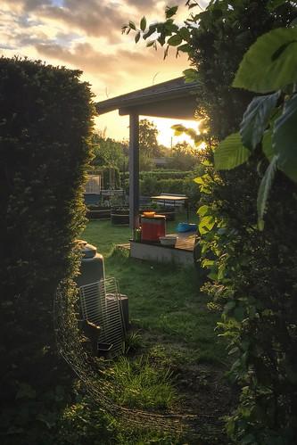 Somebody Else's Garden | by André Hofmeister