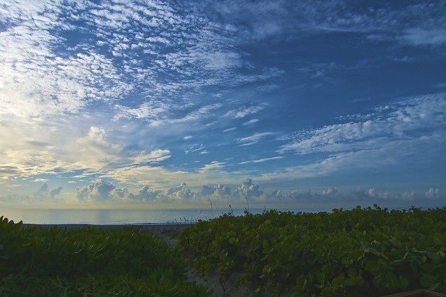 Del Ray Beach, Florida (4)