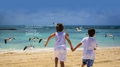 Puerto Vallarta Beach - Velas Vallarta