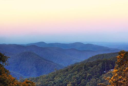 sunset mountain fog forest gold coast day mt view australia queensland lands tamborine hinterlands hinter escarpmentresort