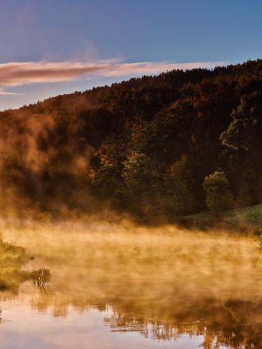 uk morning autumn trees mist water leaves sunrise landscape dawn colours tranquil autumnal malton northyorkshire subtle riverderwent mamiya645afdii leafaptus22 kirkhamabbey mediumformatdigitalback markmullenphotography oakcliffwood