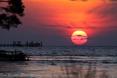 sunset sun gulfofmexico gulf florida sunsets floridagulfcoast gulftnc09 gulfconservation