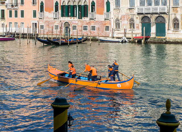 Rowing on Grand Canal. Venice 2014