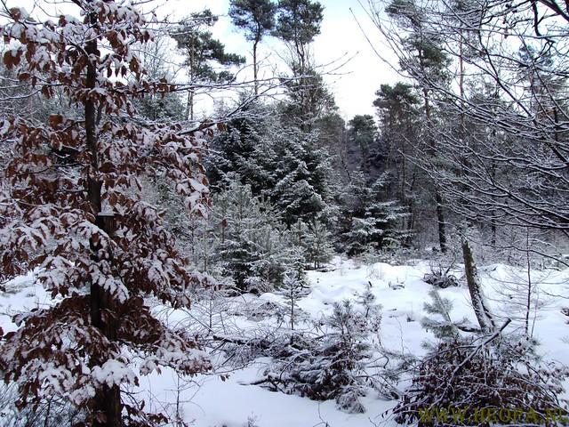 Ugchelen 30-01-2010 30Km (38)