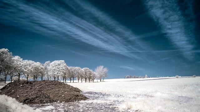 landscape-ir from Belgium