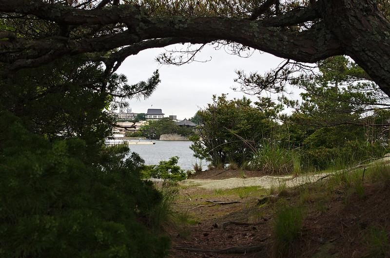 Sur l'île Oshima