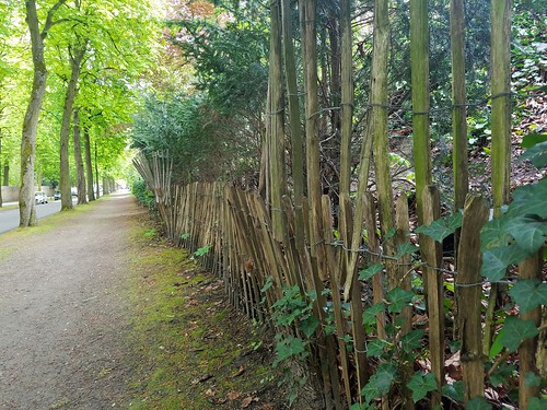 leuven fence belgium path arenbergpark kardinaalmercierlaan