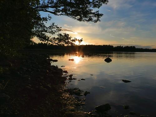 sea reflection water finland evening helsinki rocks sundown dusk pinetrees gulfoffinland kallahti kallahdenniemi