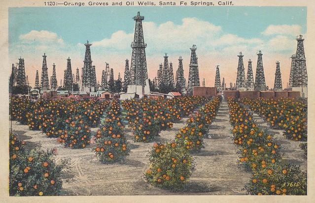 Orange Groves and Oil Wells - Santa Fe Springs, California