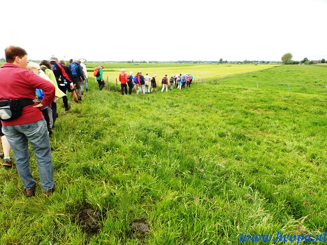 2016-05-25        s'Graveland       25 Km (99)