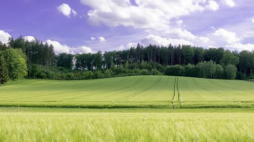 aichach bayern deutschland de lumix panasonic dmcg7 dmcg70 mft microfourthirds g7 g70 lumixg7 lumixg70 nophotoshop keineschmutzigentricks ohneschmutzigetricks nodirtytricks gvario14140f3556 outdoor landschaft landscape himmel sky