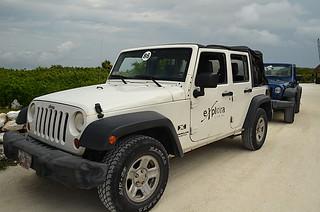 Jeep -03 | by KathyCat102