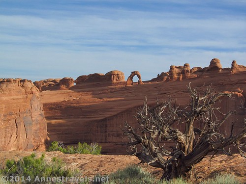 Views of Delicate Arch from the Upper Delicate Arch Viewpoint, Arches National Park, Utah