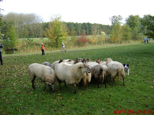Lelystad           18-10-2008       40.5 Km (38)