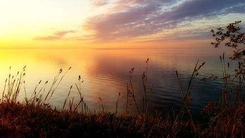 park lake toronto ontario canada color nature sunrise spring perfect shine shoreline content edge lakeshore vista scarborough serene effervescent bliss westhill lakefront mellow shimmer birdsanctuary glisten happier blissful eastpointpark