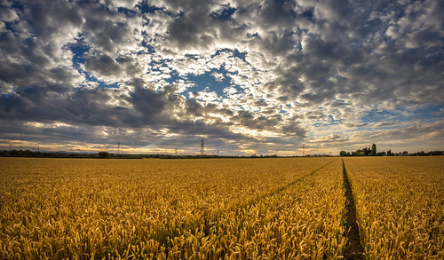 sunset field clouds little edited fisheye crop sutton lightroom ledsham ellesmereport