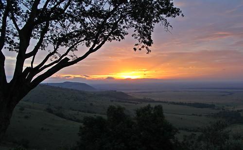 africa tree clouds sunrise kenya songlyrics maasaimara