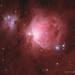 M42, The Orion Nebula, HaRGB collaboration by TheAstroShake