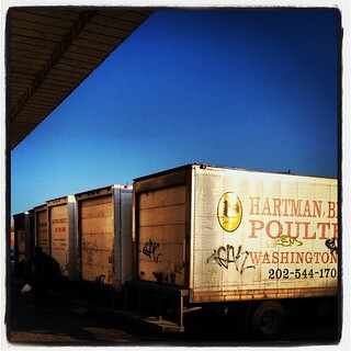 Truck truck truck truck truck.