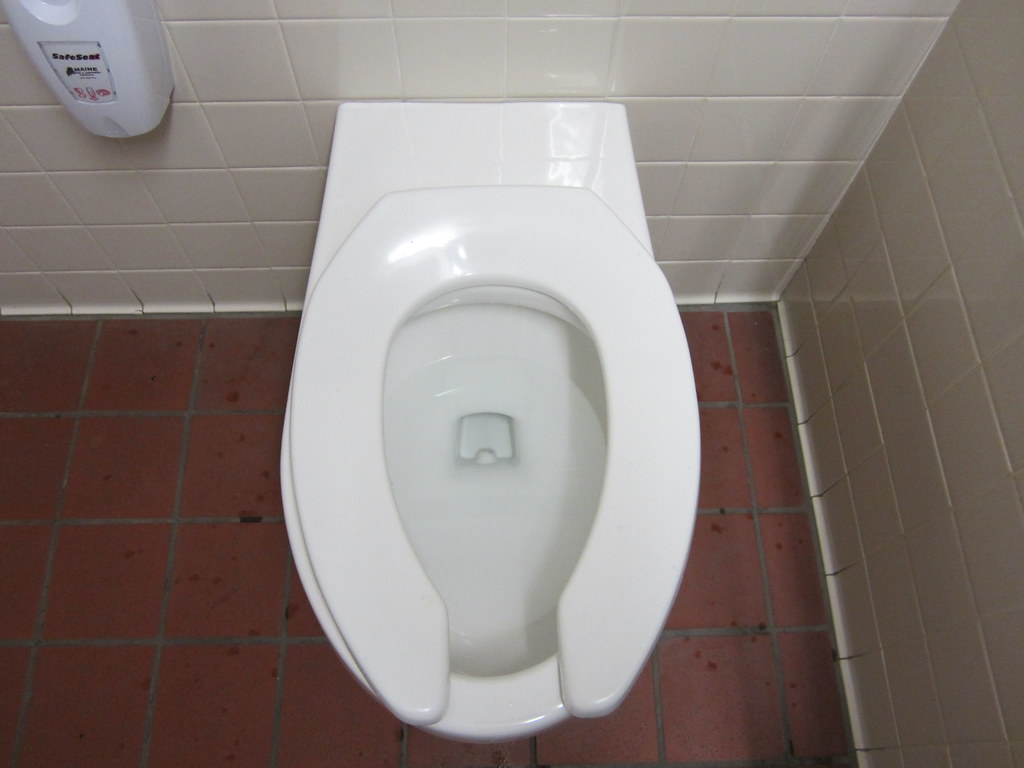 Back Spud Early 2000 S Eljer Signature Wall Hung Toilet 2