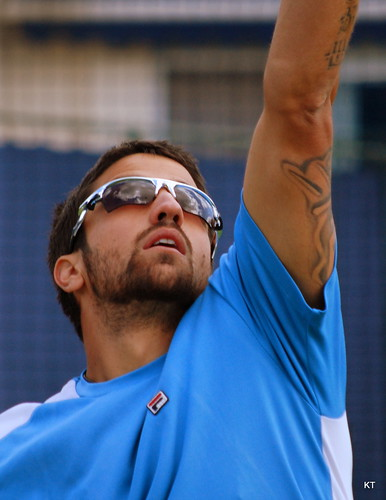 Tipsarevic serve | by Carine06