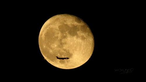 usa moon nature night landscapes us photo orlando florida paisaje luna fullmoon fl lunallena estadosunidos seminolecounty eeuu 2013 moonandplane lunartics nightflights condadodeseminole flyinginfrontofthemoon