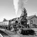 80136 West Somerset Railway by John Wiltshire