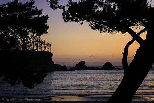 park travel sunset wild woman usa cloud mountain hot west tree sexy ass beach wet beautiful rock sex oregon forest canon sketchy naked nude photography spread bay coast us photo big high fantastic tit photographer tour state pacific northwest or awesome tide butt arnold pussy central picture peaceful wave pic professional charleston where photograph empire huge wife upskirt cape 5d serene how milf ore idyllic tidal seastack northbend coos mkiii arago davearnold davearnoldphotocom