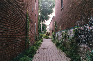 Ruelle Verte - Demers | by nroclaniffirg