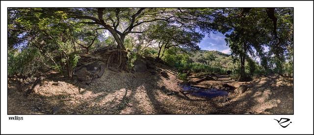 :: Barranco de los Cernícalos I 360º ::