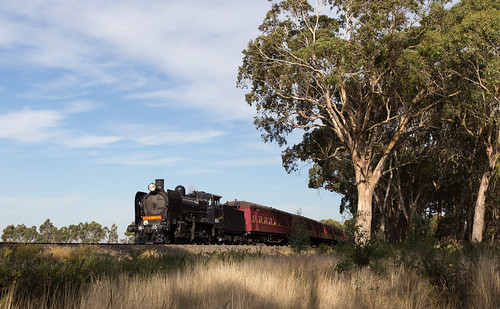K153 through the trees at Navigators | by michaelgreenhill