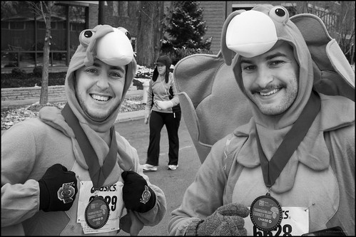 Turkey Trotters | by Stephen A. Wolfe